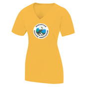 - LST700 Ladies Ultimate Performance V Neck